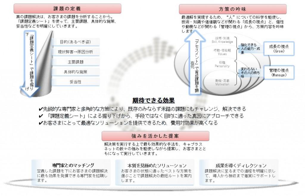 株式会社キャプラスネット 人事コンサルティング